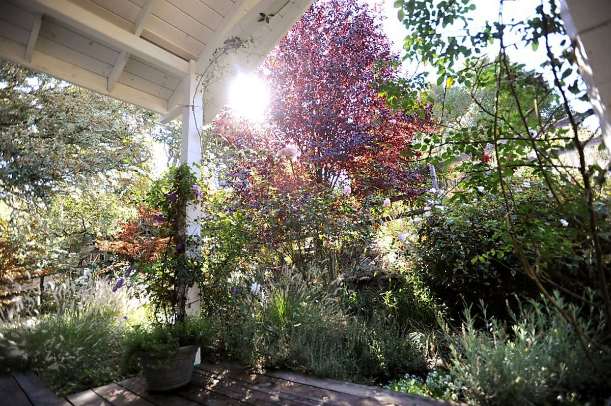 Aromas from Erickson's sunny garden provide inspiration for her perfumes.