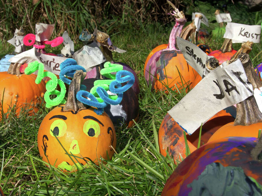 Oct. 5:The 22nd annual Fall Festival hosted by Hollandia Nurseries will take place from 10 a.m. to 4 p.m., and Sunday from 10 a.m. to 1 p.m. The festival will be at the 103 Old Hawleyville Road nursery in Bethel. 203-743-0267. Photo: Trish Haldin