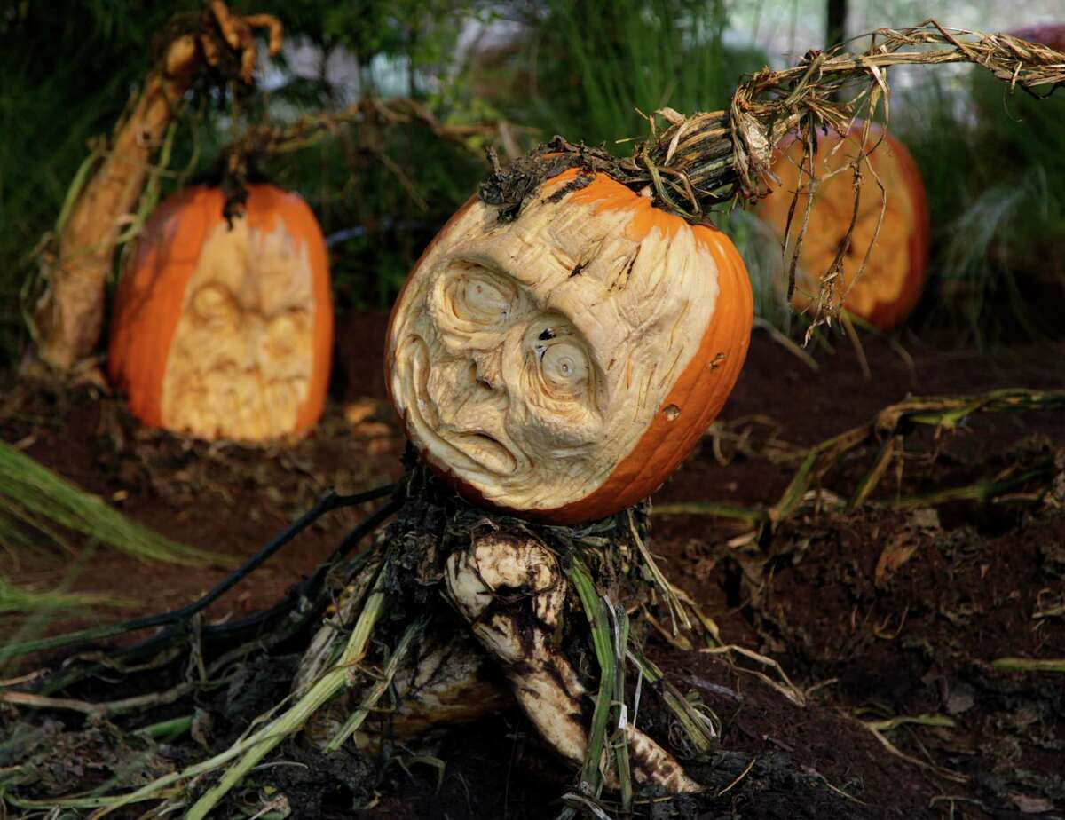Carved pumpkins are displayed at the New York Botanical Gardens in New York, Tuesday, Oct. 23, 2012. This carving and other Halloween-theme carvings will be on display through Oct. 31, 2012.