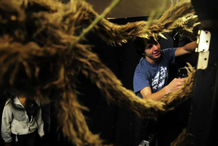 "Rob Ranieri, 17, of Norwalk, hangs harry spiders as he helps set up for ""Zombies Alive,"" the haunted house at the youth activity center at St. Philip Church in Norwalk.  The event runs Friday, Oct. 26 and Saturday, Oct. 27 from 6 pm-9 pm and Sunday, Oct. 28 from 5 pm-7 pm. Photo: Autumn Driscoll / Connecticut Post"