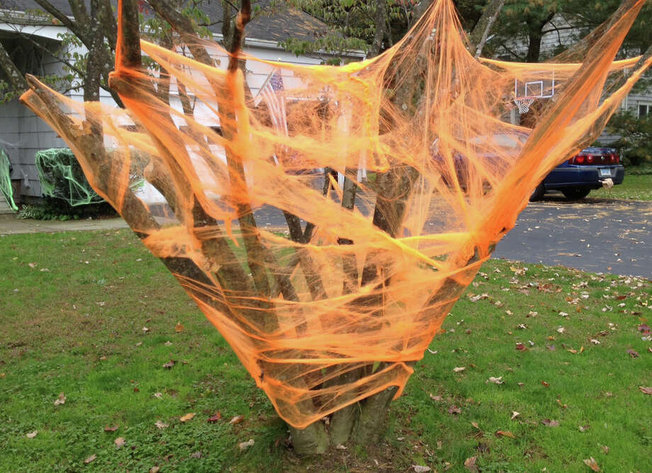 An eerie web of a different color entangles a tree on Oak Street. Photo: Eileen Hart