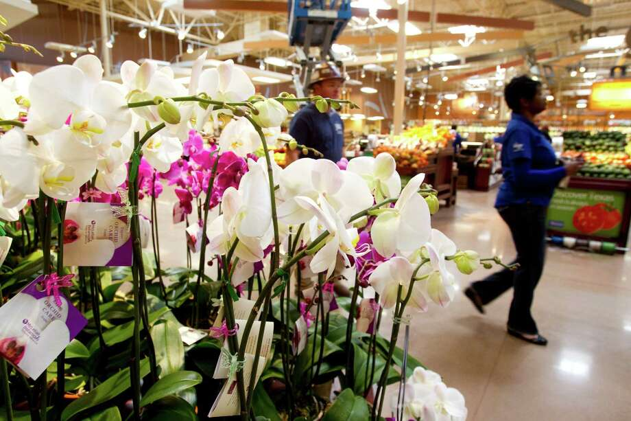 Orchids are shown on display at the new Kroger on Studemont Wednesday, Oct. 24, 2012, in Houston. The signature grocery store is scheduled to open October 26. Photo: Brett Coomer, Houston Chronicle / © 2012 Houston Chronicle