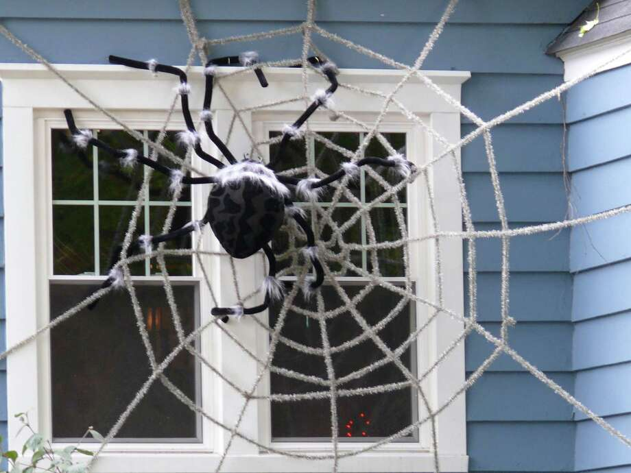 Something's caught in the gigantic web at a South Benson Road home. Photo: Genevieve Reilly
