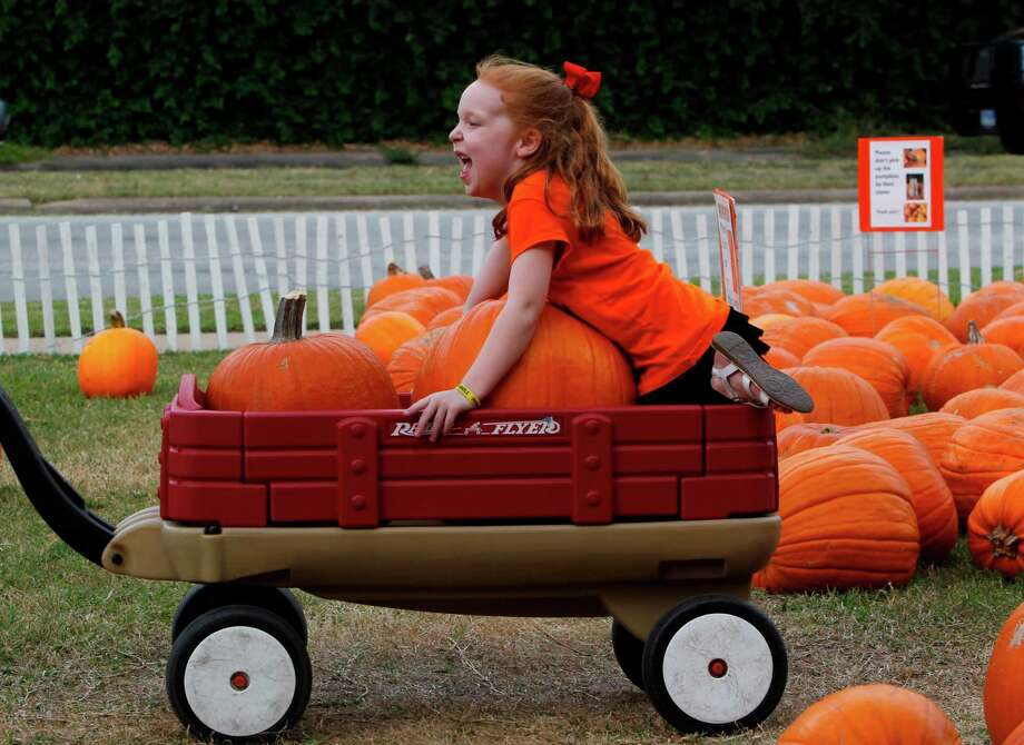 Peyton Muecke rides the wagon after picking pumpkins at the St. Luke's Methodist Church pumpkin patch on Thursday, Oct. 25, 2012, in Houston. Photo: Mayra Beltran, Houston Chronicle / © 2012 Houston Chronicle