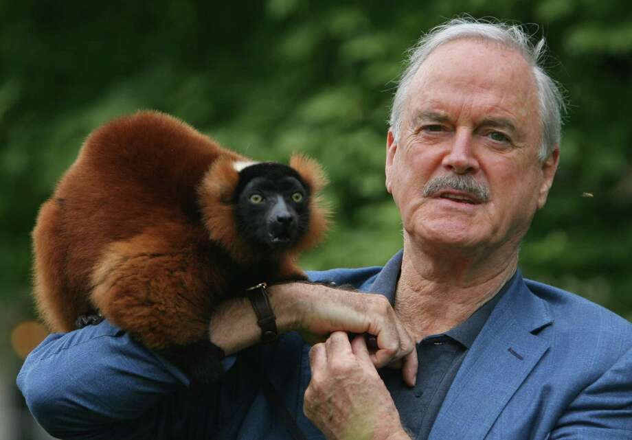 BRISTOL, UNITED KINGDOM - JULY 22:  Actor John Cleese stands with his friend and co-star Colin, a red ruffed lemur at Bristol Zoo on July 22, 2008 in Bristol, England. The Monty Python star, who grew up in Weston-Super-Mare and went to school in Bristol, was there to promote a series of performances he is conducting next week in aid of the Zoo. John Cleese has a passion for lemurs and their conservation, he says started from school boy visits to Bristol Zoo and he has even had a species of wooly lemur's named after him.  (Photo by Matt Cardy/Getty Images) Photo: Matt Cardy, Stringer / Getty Images Europe
