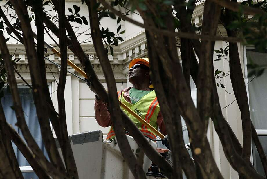 Haafe Lavalu of the Public Works Department trims trees along Hyde Street at Broadway. The city wants to shift maintenance to private property owners. Photo: Michael Macor, The Chronicle