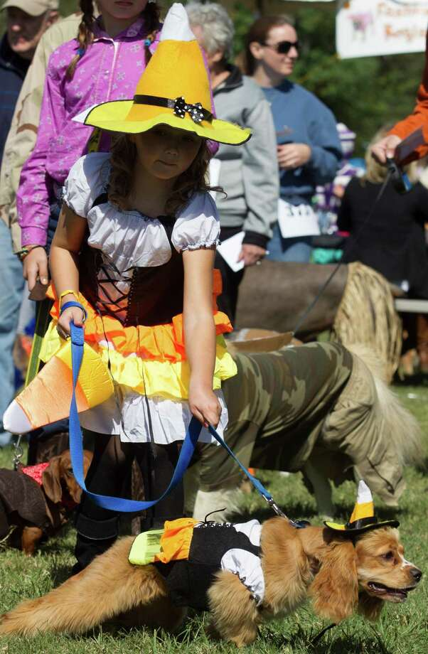 Alexandra Scheick, 9, waits in line with her 7-month-old cocker spaniel Ellie for the fashion show in their candy witch costumes during the fourth annual Howl-O-Ween Fest 2012 at Bridgeland's Oak Meadow Park in Cypress on Saturday, Oct. 27, 2012, in Houston. Photo: J. Patric Schneider, For The Chronicle / © 2012 Houston Chronicle