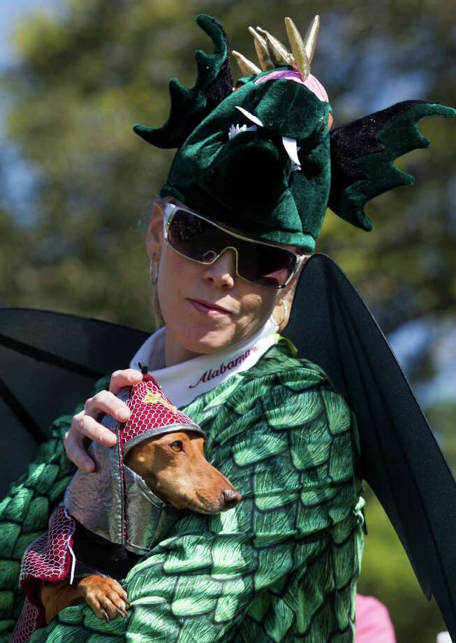 Laura Price dresses up as a dragon as her three-year-old dachshund Henry wears the dragon slayer costume during the fourth annual Howl-O-Ween Fest 2012 at Bridgeland's Oak Meadow Park in Cypress on Saturday, Oct. 27, 2012, in Houston. Photo: J. Patric Schneider, For The Chronicle / © 2012 Houston Chronicle