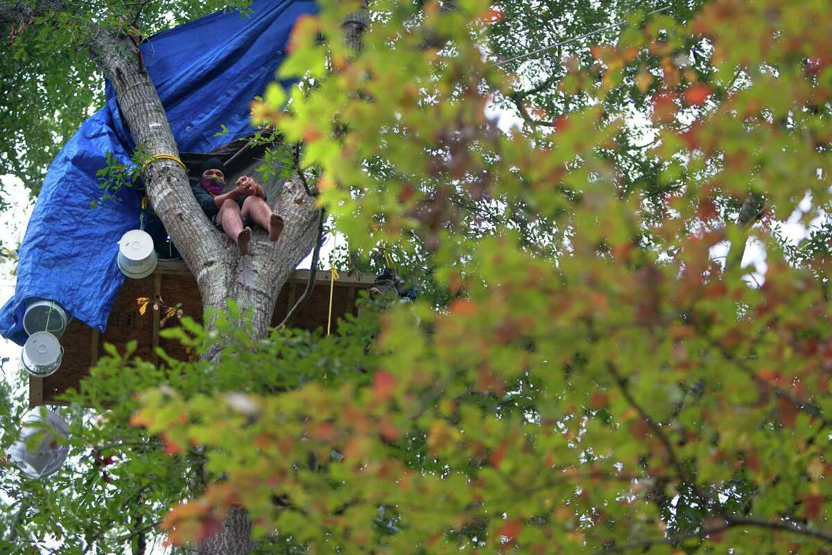 Chickadee sits in a tree showing his opposition for TransCanada's Keystone XL project in Wood County Wednesday, Oct. 24, 2012, in Winnsboro. He said he was from the east coast and would only identify himself with the name Chickadee out of fear of a lawsuit from TransCanada. He has been in the trees for more than a month.