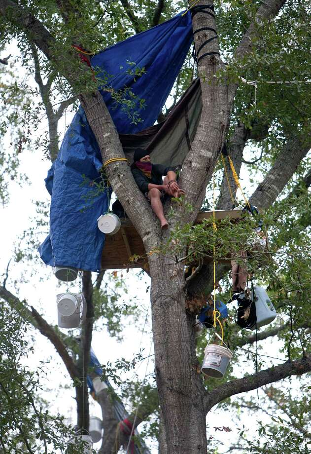 Chickadee sits in a tree showing his opposition for TransCanada's Keystone XL project in Wood County Wednesday, Oct. 24, 2012, in Winnsboro. He said he was from the east coast and would only identify himself with the name Chickadee out of fear of a lawsuit from TransCanada. Photo: Cody Duty, Houston Chronicle / © 2012 Houston Chronicle