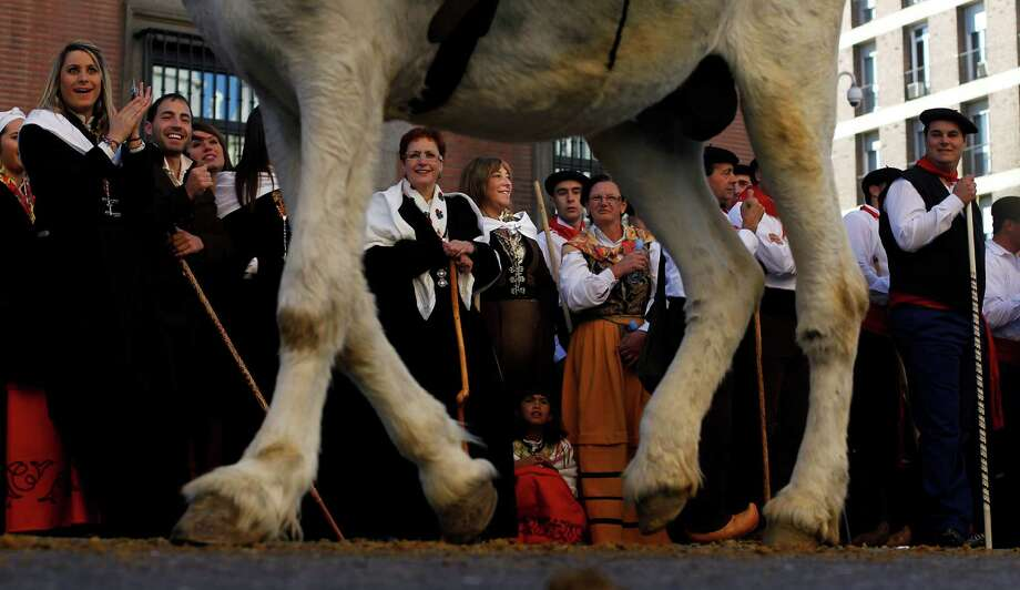 Participants look on as farmers lead their horses through the centre of Madrid, Spain, Sunday, Oct. 28, 2012. Spanish shepherds led flocks of sheep through the streets of downtown Madrid in defense of ancient grazing, migration and droving rights threatened by urban sprawl and man-made frontiers. The rights to droving routes have existed since before Madrid grew from a rural hamlet to the great capital it is today. (AP Photo/Andres Kudacki) Photo: Andres Kudacki, Associated Press / AP
