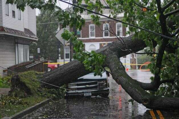 A tree fell across a truck as a result of Hurricane Irene in Albany, NY. (AP)