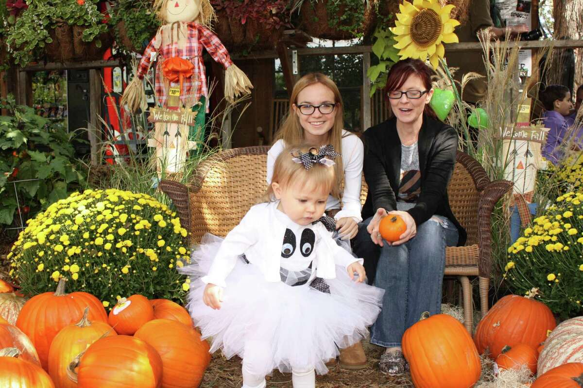 Milberger's Halloween Photos - Saturday, October 26, 2012