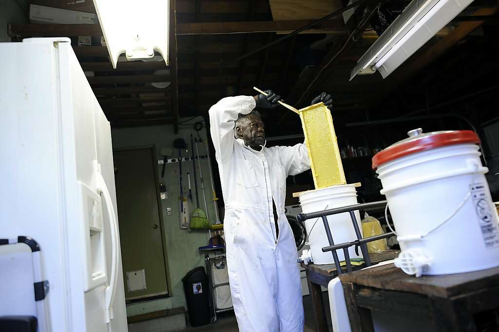 Russel Shaffer, President Of The Alameda County Beekeepers Association,  Works In His Garage In