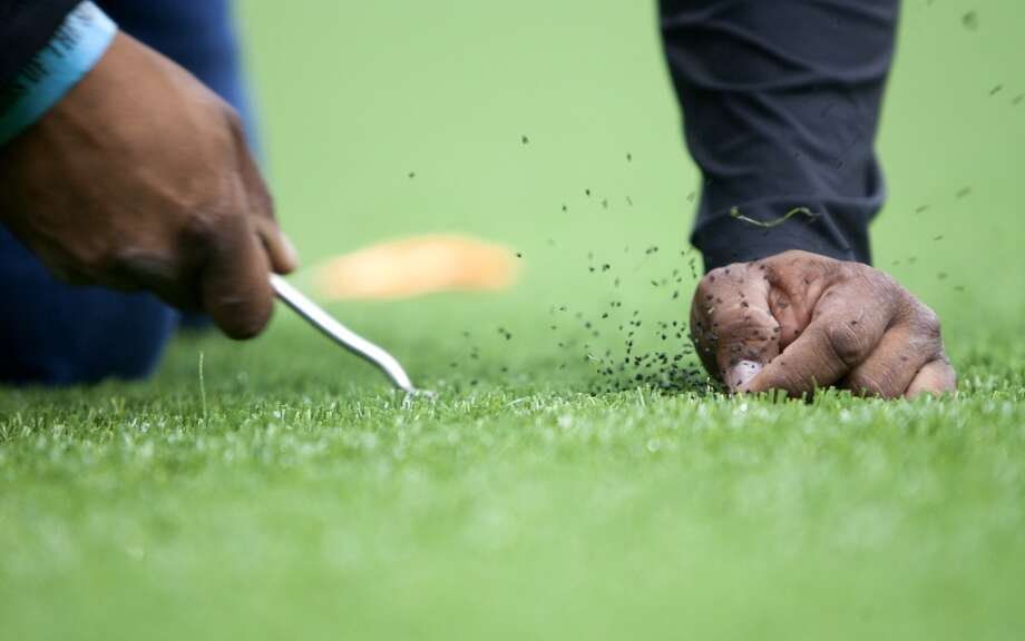 Fransisco Lares uses a pick to make lying strands of synthetic grass stand up in the newly installed AstroTurf field at Reliant Stadium (Cody Duty / Houston Chronicle)