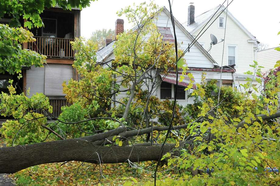 Hurricane Sandy's high winds caused this large tree to fall a house on Monday, Oct. 29, 2012 in Troy, N.Y. (Lori Van Buren / Times Union) Photo: Lori Van Buren