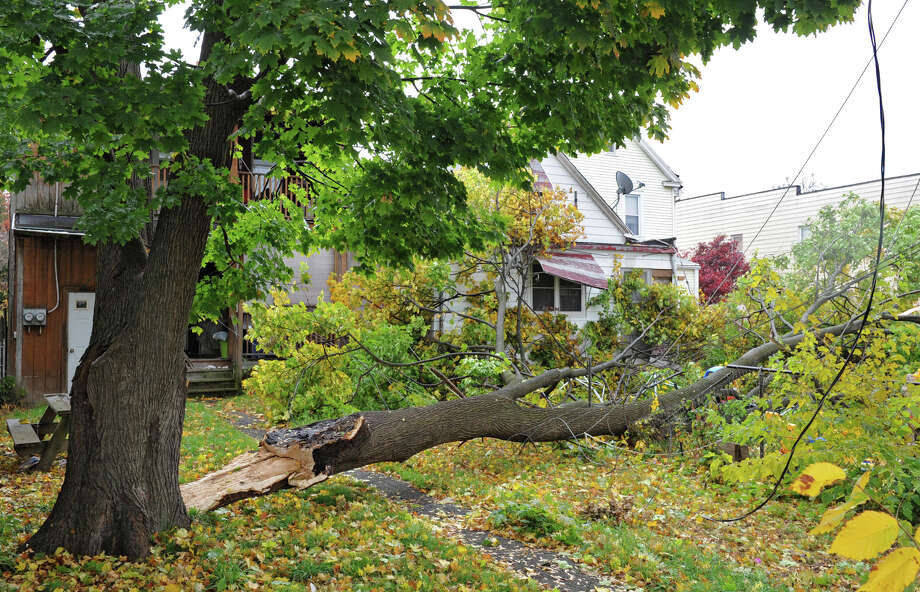 Hurricane Sandy's high winds caused this tree to fall a house on Monday, Oct. 29, 2012 in Troy, N.Y. (Lori Van Buren / Times Union) Photo: Lori Van Buren