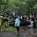 People pass a fallen tree October 30, 2012 in the Battery Park neighborhood of Manhattan, New York. The storm has claimed at least 16 lives in the United States, and has caused massive flooding across much of the Atlantic seaboard. US President Barack Obama has declared the situation a 'major disaster' for large areas of the US East Coast including New York City.