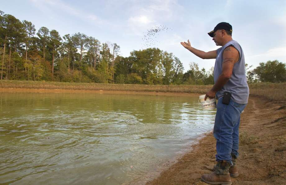 Gabe Cordova feeds the fish in a pond on his mother's property where TransCanada's Keystone XL pipeline comes through in Wood County, Wednesday, Oct. 24, 2012, in Winnsboro. Cordova is opposed to the pipeline running through the 60-acre property owned by his mother where he now lives. He is against the pipeline for different reasons including his fear that it will leak into the ground and possibly poison the pond. (Cody Duty / Houston Chronicle)