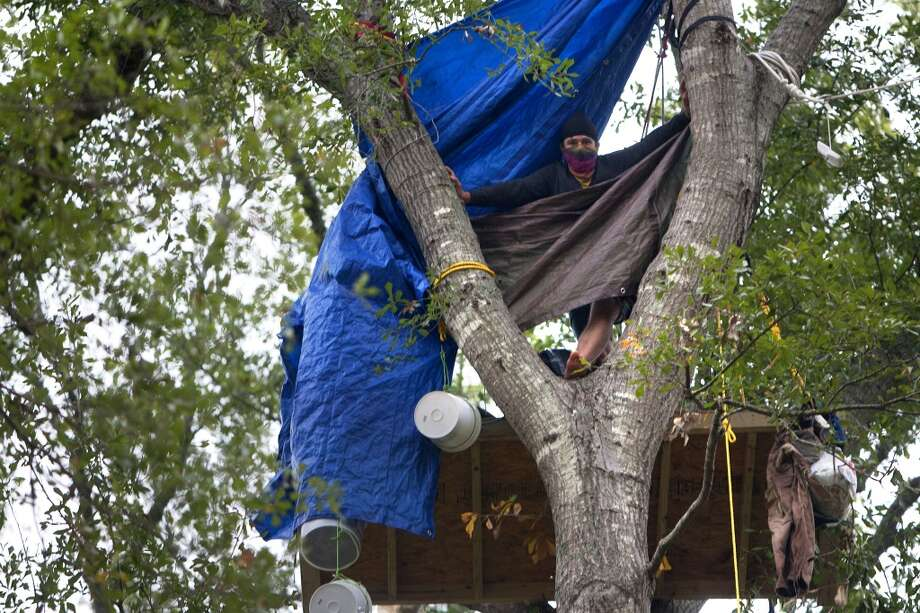 Chickadee sits in a tree showing his opposition for TransCanada's Keystone XL project in Wood County Wednesday, Oct. 24, 2012, in Winnsboro. Photo: Cody Duty, Houston Chronicle / © 2012 Houston Chronicle