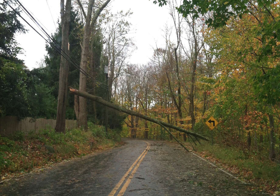 In her wake, Hurricane Sandy littered Darien with fallen trees, like this on Mansfield Avenue that hangs over the wires. Photo: Contributed