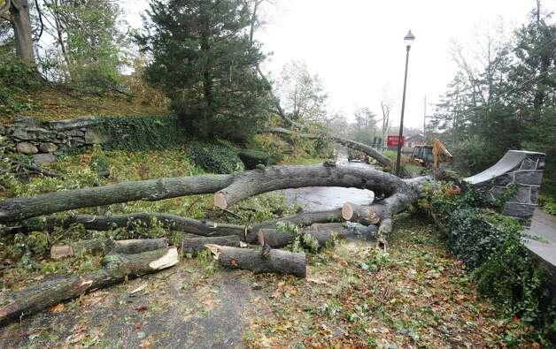Storm damage in Byram Park during the aftermath of Hurricane Sandy, Tuesday morning, Oct. 30, 2012. Photo: Bob Luckey / Greenwich Time