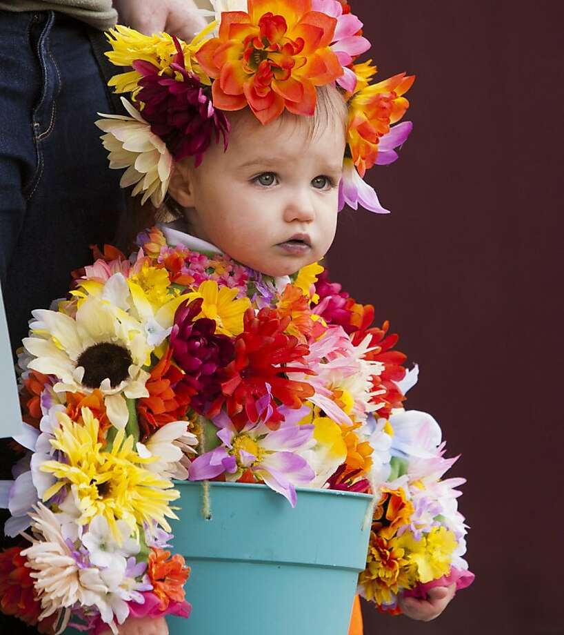 Flower child:A bucket bouquet named Tianna Rapp, 18 months, comes with beaucoup blooms at the Boo at the Zoo event in Boise. Photo: Darin Oswald, Associated Press
