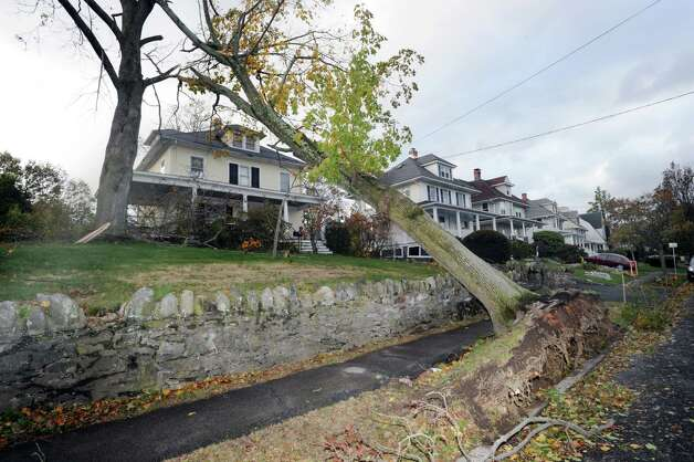 A fallen tree rests on another tree near a Ridge Street home in central Greenwich, Tuesday, Oct. 30, 2012, during the aftermath of Hurricane Sandy Photo: Bob Luckey / Greenwich Time