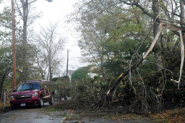 Emergency responders drive around a downed tree en route to Binney Lane where multiple homes were burned during Hurricane Sandy related weather in Old Greenwich, Conn., Oct. 30, 2012. Photo: Keelin Daly
