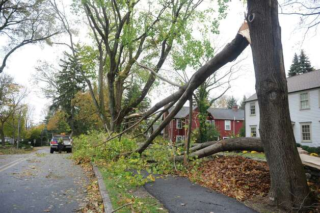 A tree limb down on Irvine Rd. in Old Greenwich, Conn. on Tuesday, Oct. 30, 2012, after the storms from Hurricane Sandy. Photo: Helen Neafsey