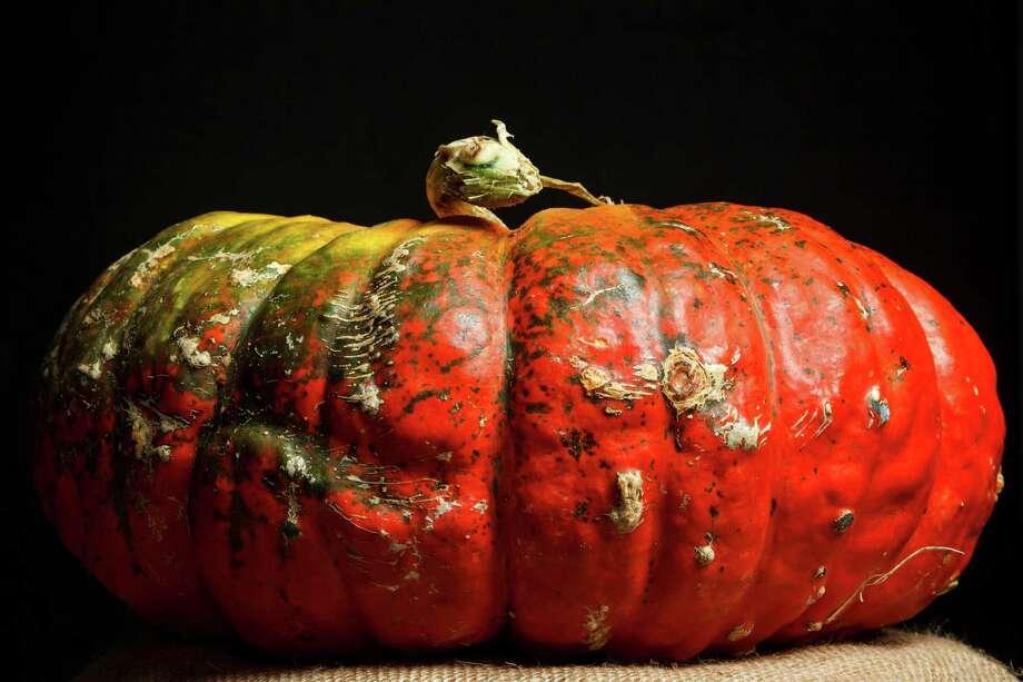Chicken-and-White Bean Chili with Pumpkin Photo: Michael Paulsen, Staff / Houston Chronicle