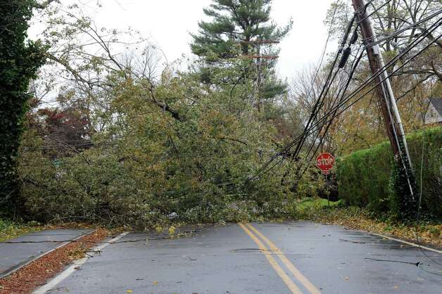 A tree sits on Tomac Ave. in Ol Greenwich, Conn.  Tue. Oct. 31, 2012, after the storms from Hurricane Sandy. Photo: Helen Neafsey / Greenwich