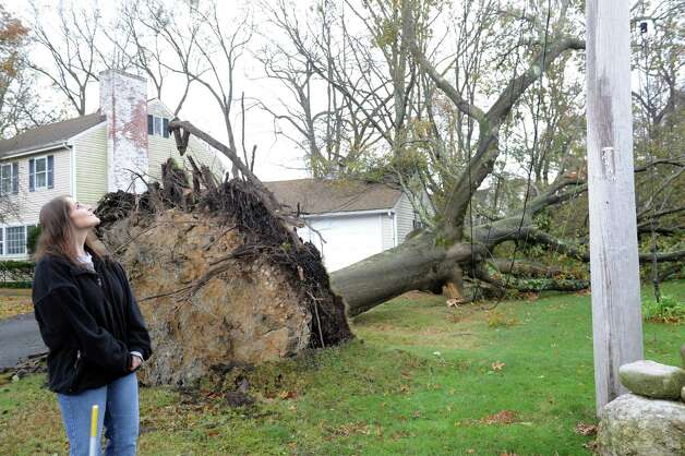 Yvette Bulycz looks at the damage from Hurricane Sandy storms in a neighbors yard in Old Greenwich, Conn. on Tuesday, Oct. 30, 2012. Photo: Helen Neafsey / Greenwich