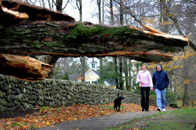 A huge tree blocks a sidewalk on Main street in Ridgefield, Conn. Tuesday, Oct. 30, 2012, where Rosemary and Steve Seagriff walk their dog. Much of Ridgefield is out of powere due to Hurricane Sandy. Photo: Carol Kaliff