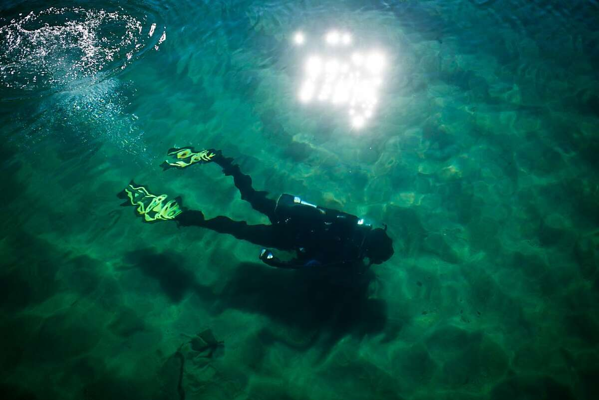 UC Davis researcher Brant Allen dives in Emerald Bay where divers are placing mats on the lake floor to control Asian clams, an invasive species to Lake Tahoe at Camp Richardson, Calif., October 30, 2012
