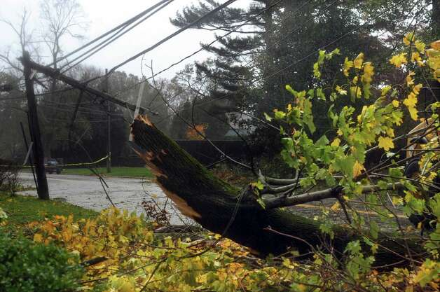 Trees and down wires litter the streets in the Shippan section of Stamford on Tuesday, October 30, 2012. Photo: Lindsay Niegelberg