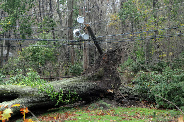 An uprooted tree lays across the property of a home on Chestnut Hill Road after Hurricane Sandy related weather in Stamford, Conn., Oct. 30, 2012. Photo: Keelin Daly