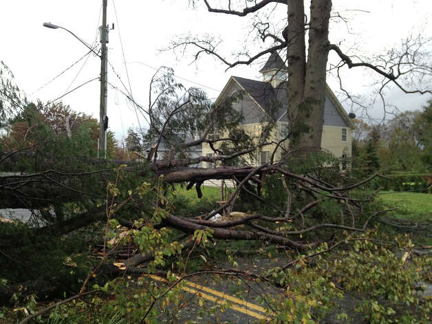 A downed pine tree in front of Gov. Dannel MalloyâÄôs home blocked Ocean Drive East in Stamford, Conn. on Tuesday Oct. 30, 2012. MalloyâÄôs home was not damaged in the storm related to Hurricane Sandy. Photo: John Nickerson