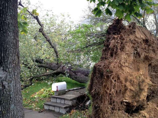 A tree fell across the front walk way of 104 Lenox Avenue in Stamford, Conn. Although the tree missed the mailbox, it struck the neighborâÄôs late model car parked in the driveway. A lot of damage was vivible throughout the region on Tuesday, Oct. 30, 2012. Photo: John Nickerson