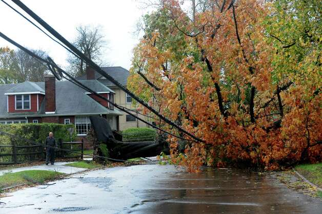 Christos Aloupis walks past a huge tree on Hope Street in Stamford, Conn. on Tuesday, Oct. 30, 2012. The winds from Hurricane Sandy topled the tree which knocked down a couple of telephone poles in the area. Photo: Cathy Zuraw
