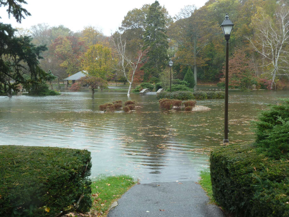 Binney park - noon, before Sandy