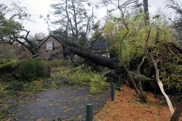 A tree crushed the gatehouse at the Bartlett Arboretum on Brookdale Road which served as a home to newlyweds Brad and Alexandra Nagle after Hurricane Sandy in Stamford, Conn., Oct. 30, 2012. The Nagles were married three weeks ago, their wedding gifts, which included family heirlooms, are still in the house. Photo: Keelin Daly / Stamford Advocate Freelance