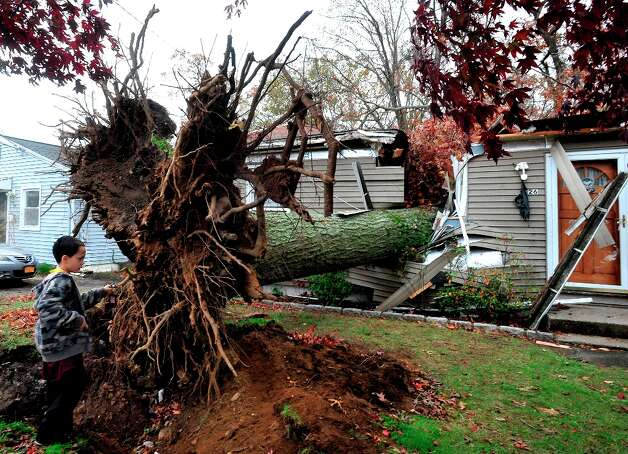 David Baldelli Jr. 8, looks at the tree that fell on his Danbury, Conn. home during Hurricane Sandy Tuesday, Oct. 30, 2012. Photo: Michael Duffy / The News-Times