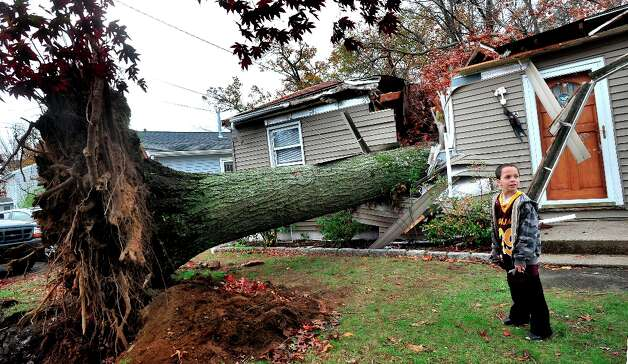 David Baldelli Jr. 8, stands by the tree that fell on his Danbury, Conn. home during Hurricane Sandy Tuesday, Oct. 30, 2012. Photo: Michael Duffy / The News-Times