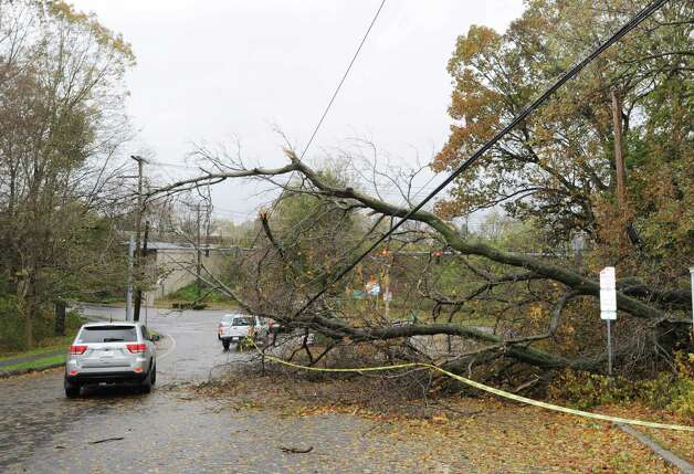 Knocked-down trees rest on utility lines on Byram Shore Road during the aftermath of Hurricane Sandy in Byram, Tuesday morning, Oct. 30, 2012. Photo: Bob Luckey / Greenwich Time
