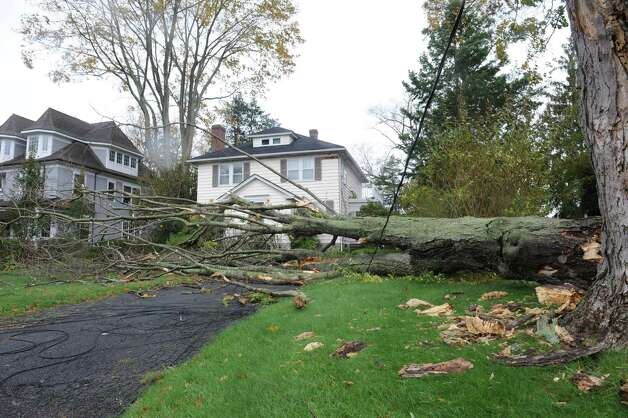 A large limb fell in Sound Beach Avenue in Old Greenwich, Conn. during the windy storm from Hurricane Sandy on Tuesday, Oct. 30. 2012. Photo: Helen Neafsey / Greenwich Time