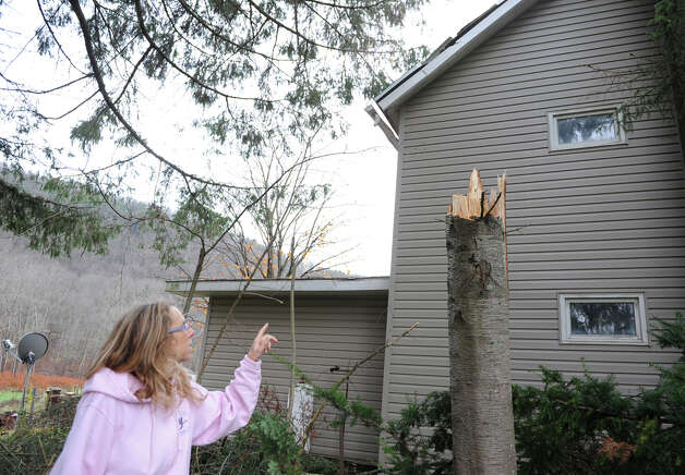 Peggy Young looks at the damage on her roof from a fallen caused by Hurricane Sandy's wind on Tuesday, Oct. 30, 2012 in Prattsville, N.Y. Peggy and her husband Jim own Young's general store. (Lori Van Buren / Times Union) Photo: Lori Van Buren