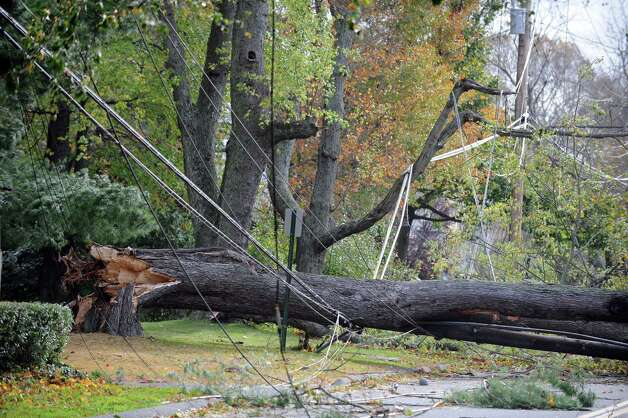 A fallen tree covers power lines on Rowland Road in Fairfield, Conn. Tuesday, Oct. 30, 2012. Photo: Autumn Driscoll