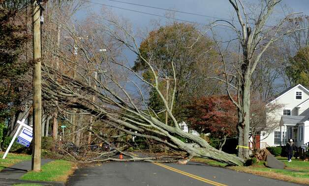 A fallen tree blocks South Pine Creek Road Tuesday, Oct. 30, 2012 in Fairfield, Conn. Photo: Autumn Driscoll