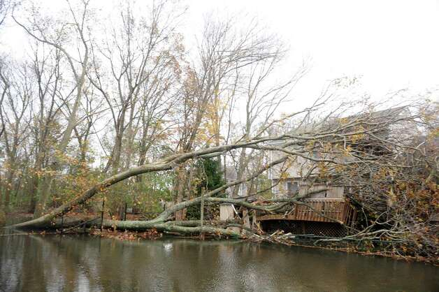 A tree fell during Hurricane Sandy crushing a deck on Mellow Street in Fairfield, Conn. Photo: Autumn Driscoll